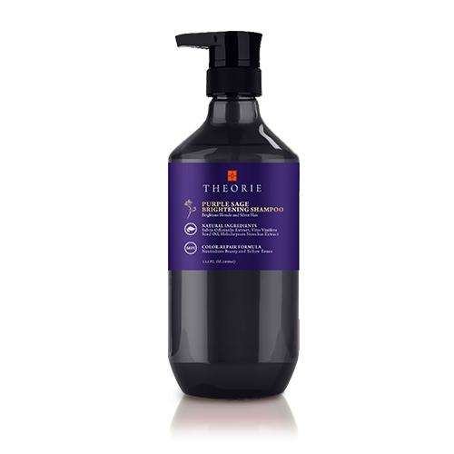 Theorie_Purple_Shampoo-500x500.png