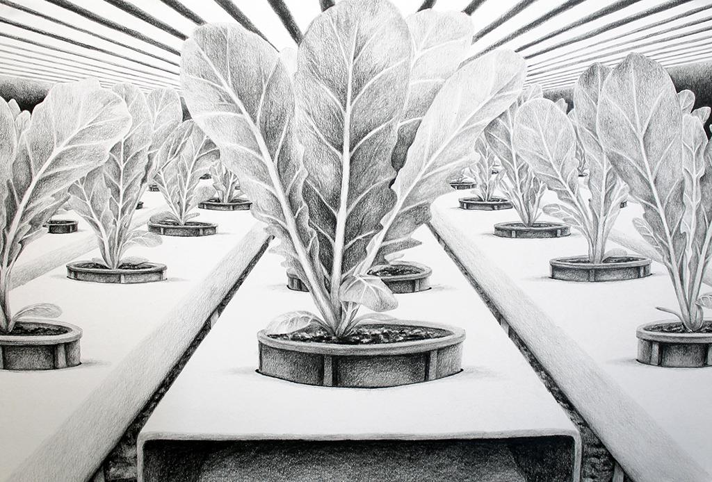 Leamington Greenhouse Drawing test1 2.jpg