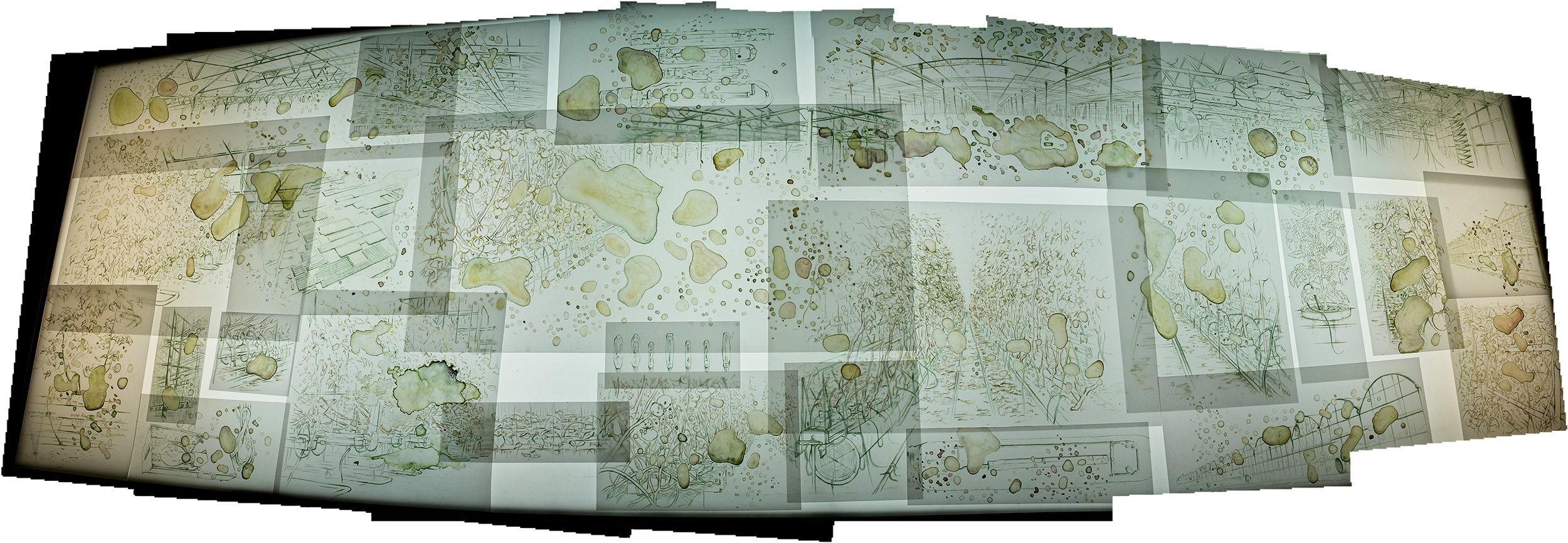Amalgamated image of drawings from light table