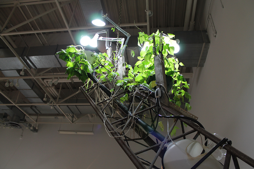 Heirloom Grow Tower8 2.jpg