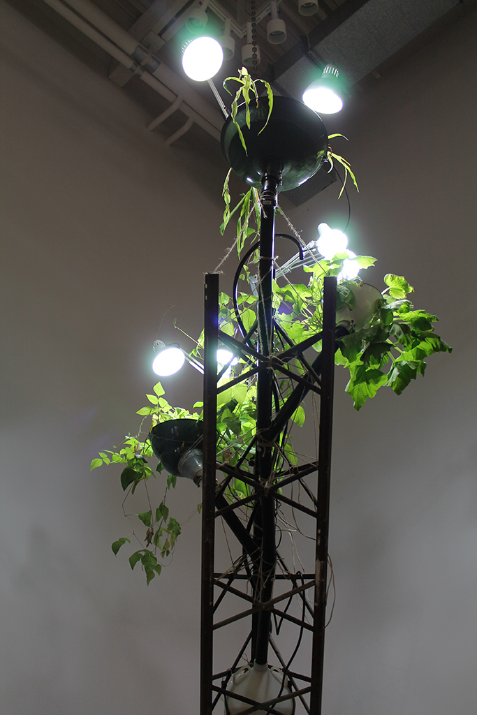 Heirloom Grow Tower9 2.jpg