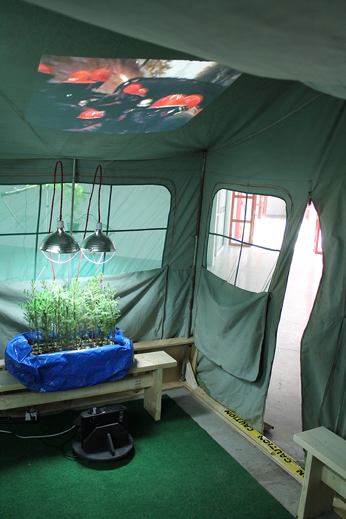 Tent Trailer Tree Theatre (Can't See the Forest for the Trees)4 2.jpg