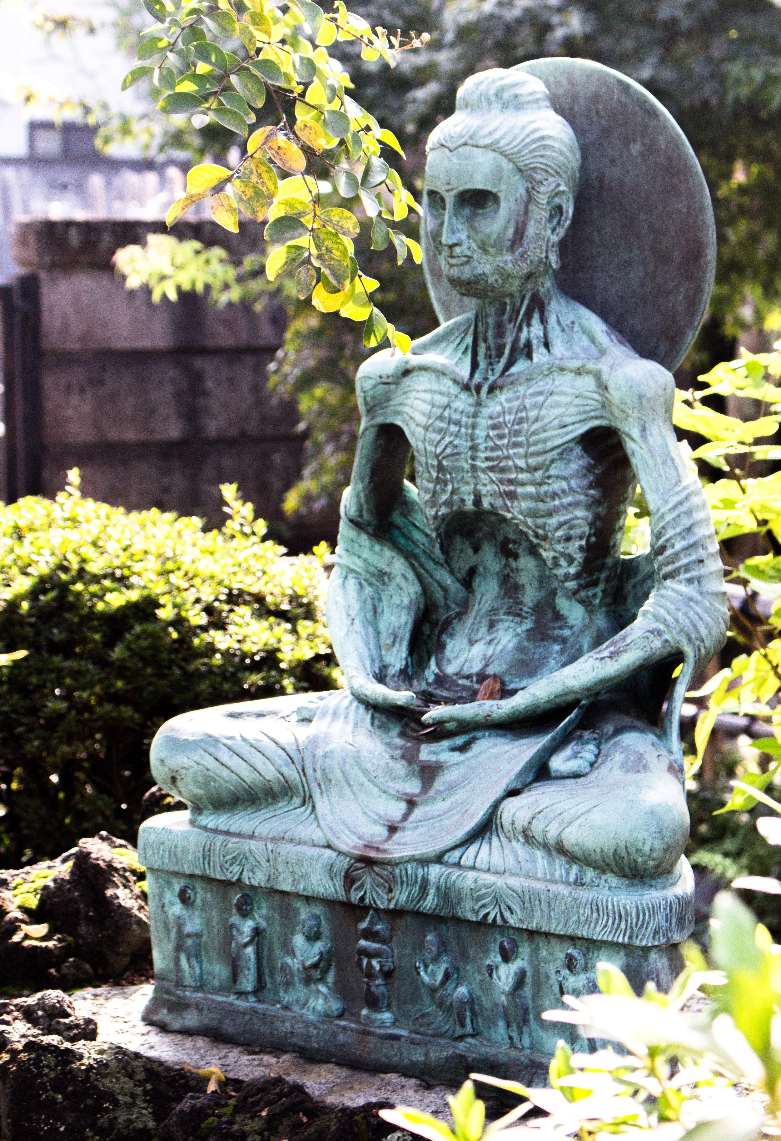 Fasting Budda -