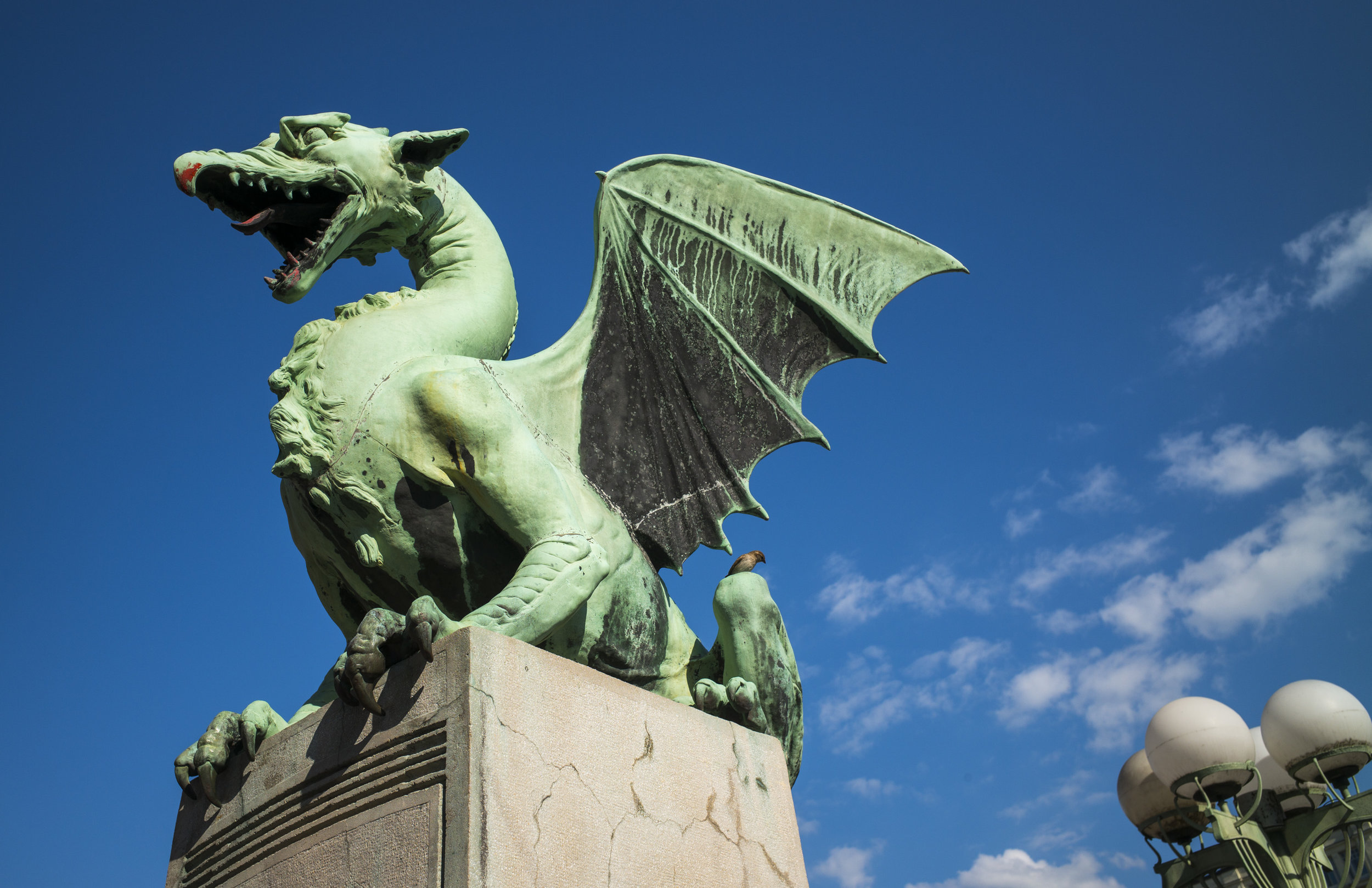 Ljubljana Dragon Gridge
