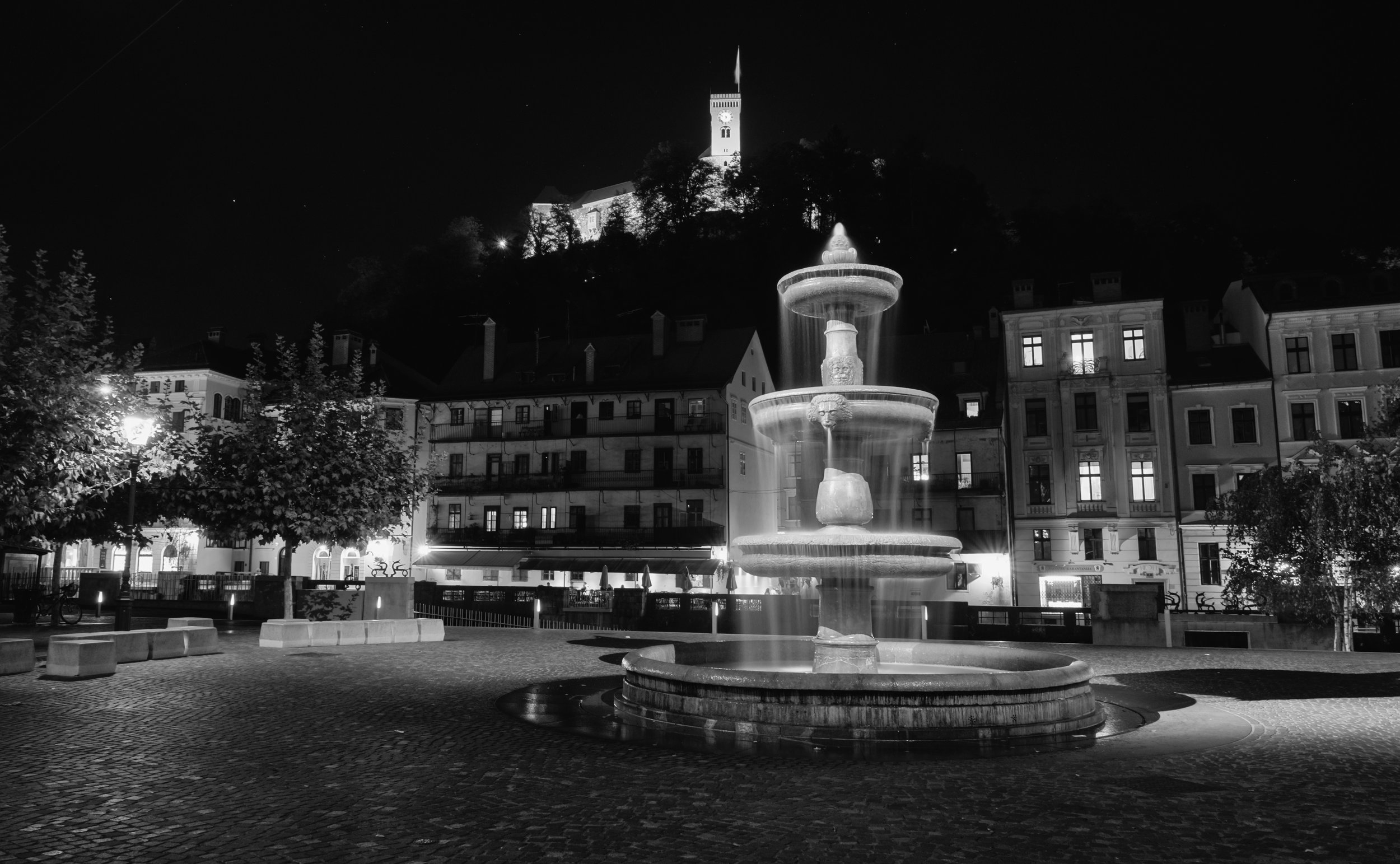 Ljubljana Black and White