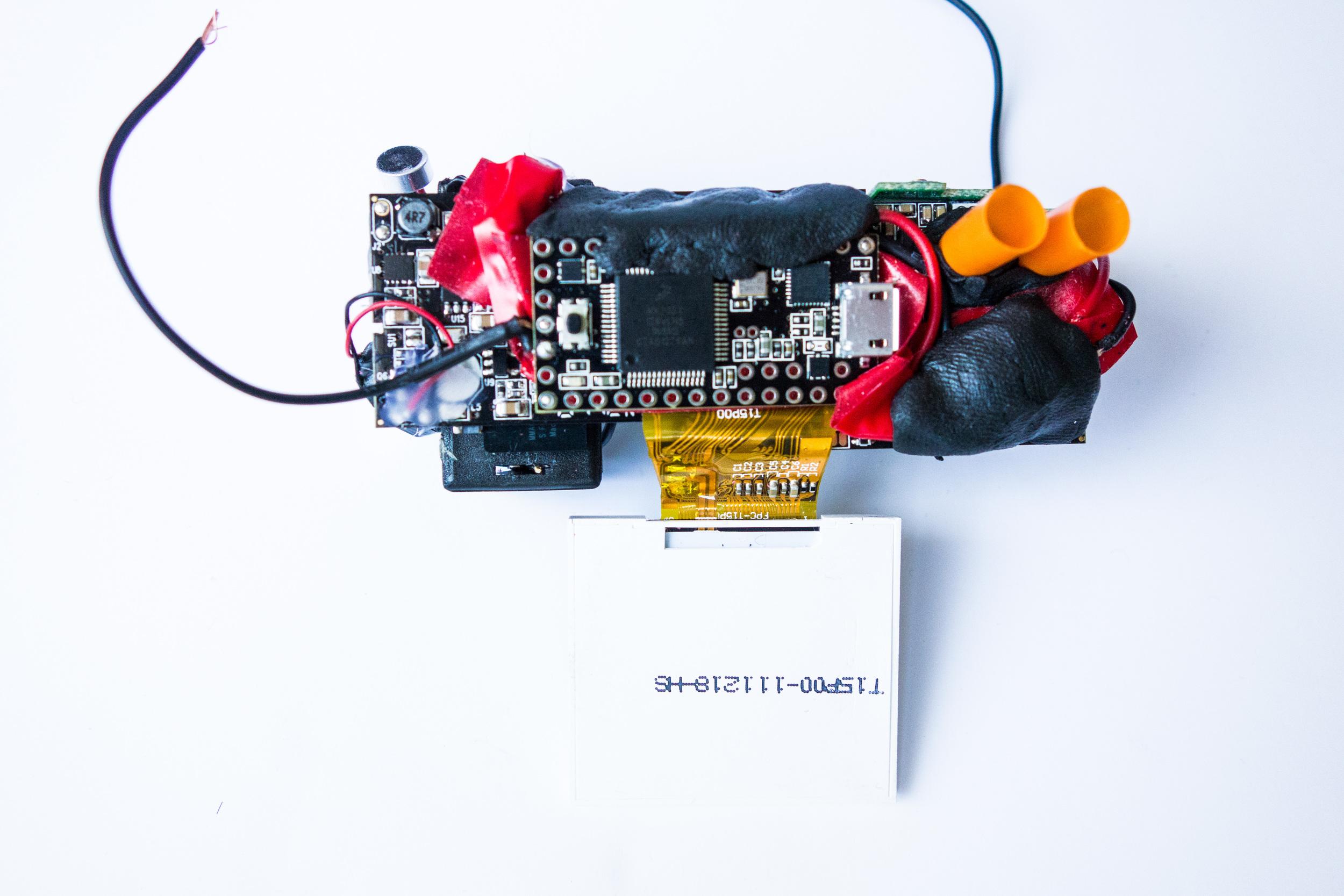 DSC00753.jpg