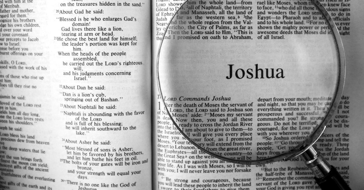 33686-Joshua.1200w.tn.jpg
