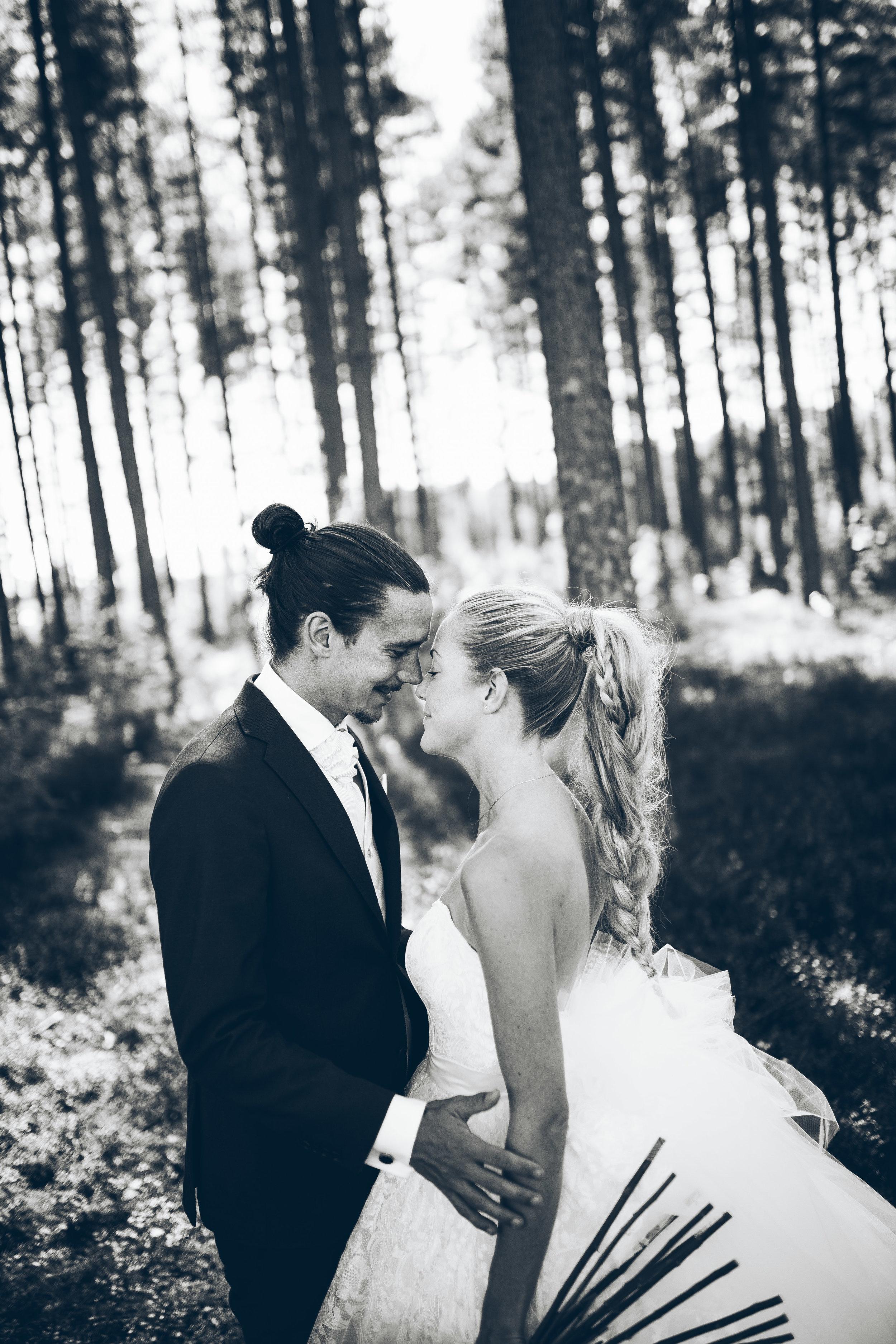 Karin&Filip160827-8-2.jpg
