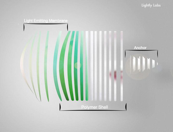 schematic_eplode.jpg
