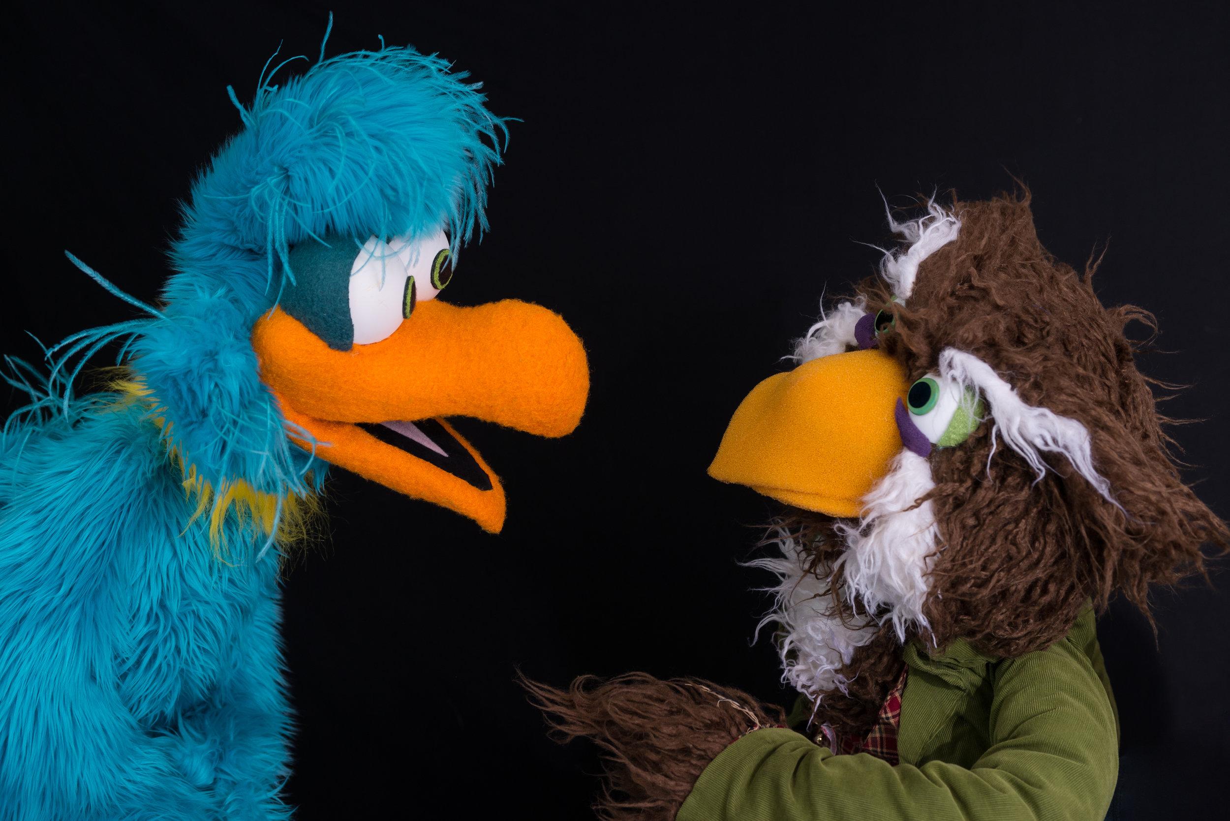 Luckl-Duckl Bird & Fowl Owl