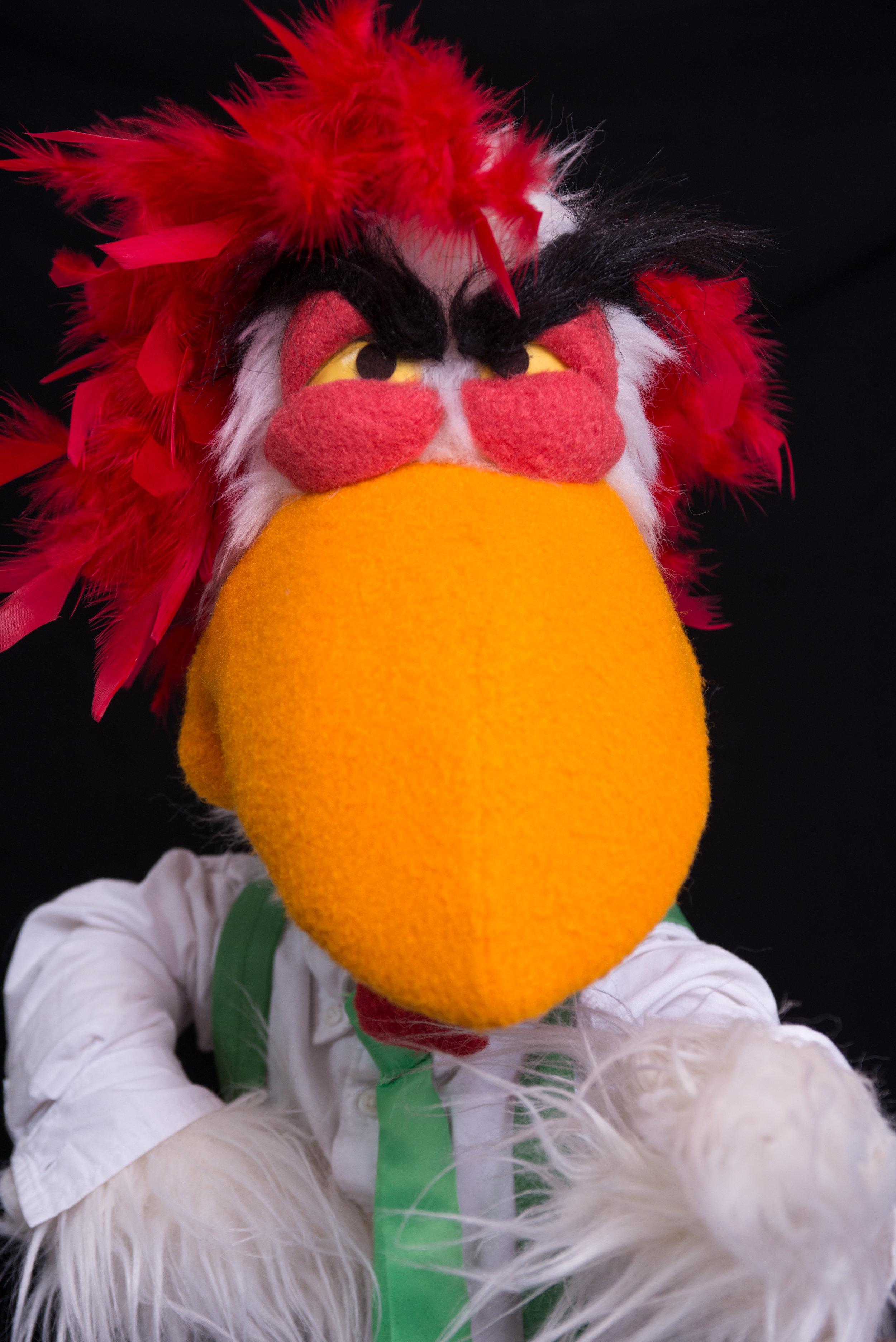 Mr. Chicker