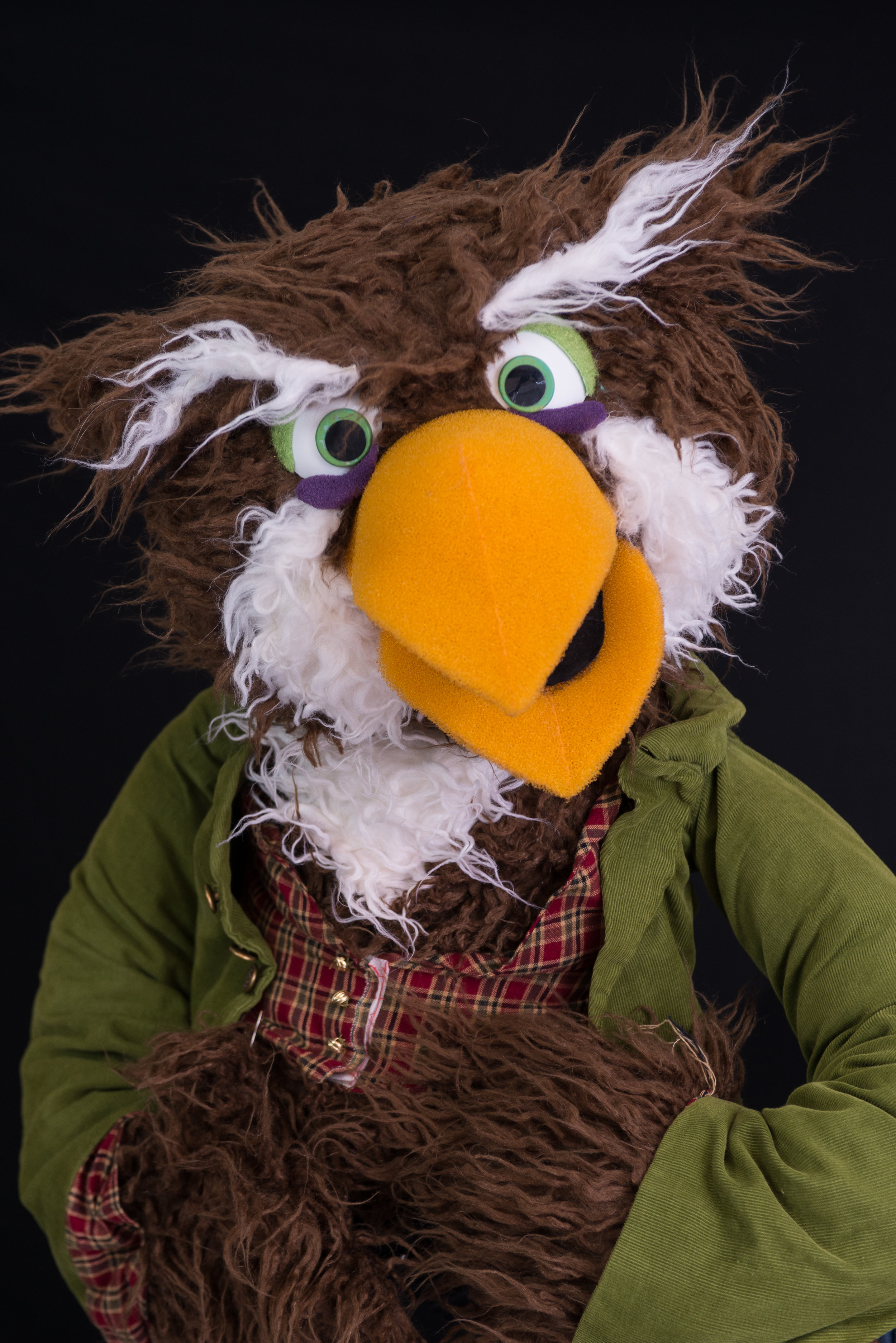 Fowl Owl Poses.jpg