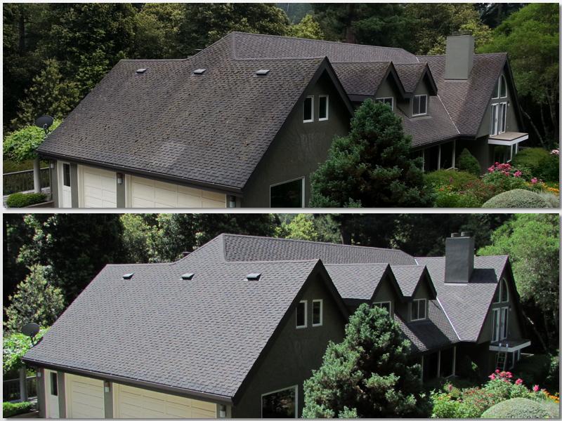 Non Pressure Asphalt Roof Cleaning.jpg