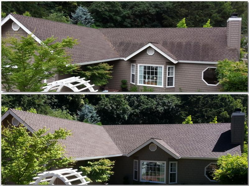 Pressure free Roof Cleaning.jpg