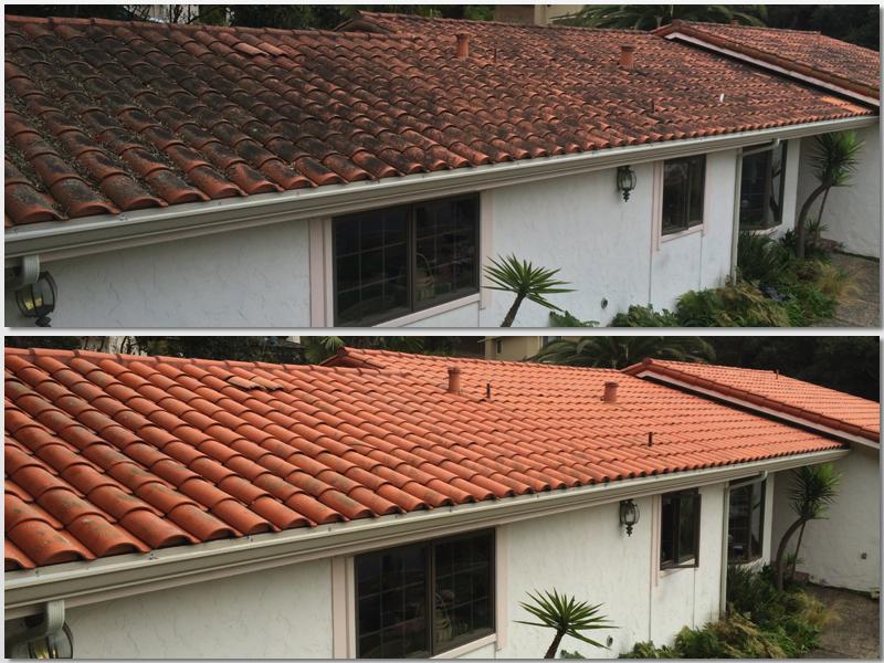 Prunedale Tile 2.jpg