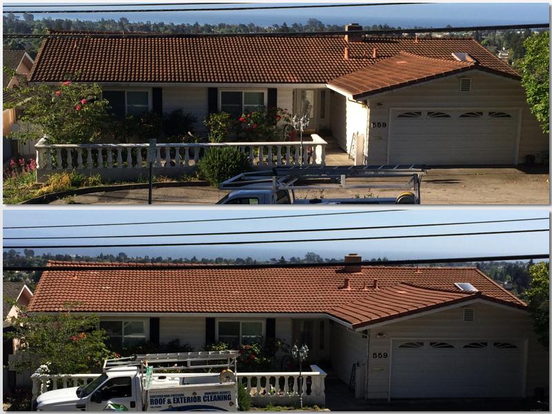 Tile Roof Clean SC.jpg