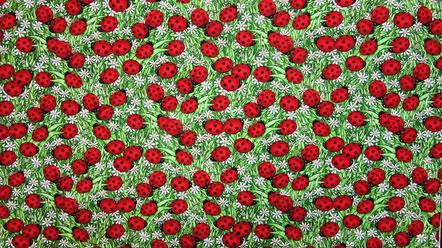 Animal Fabric — VanCootens Howard Drapery