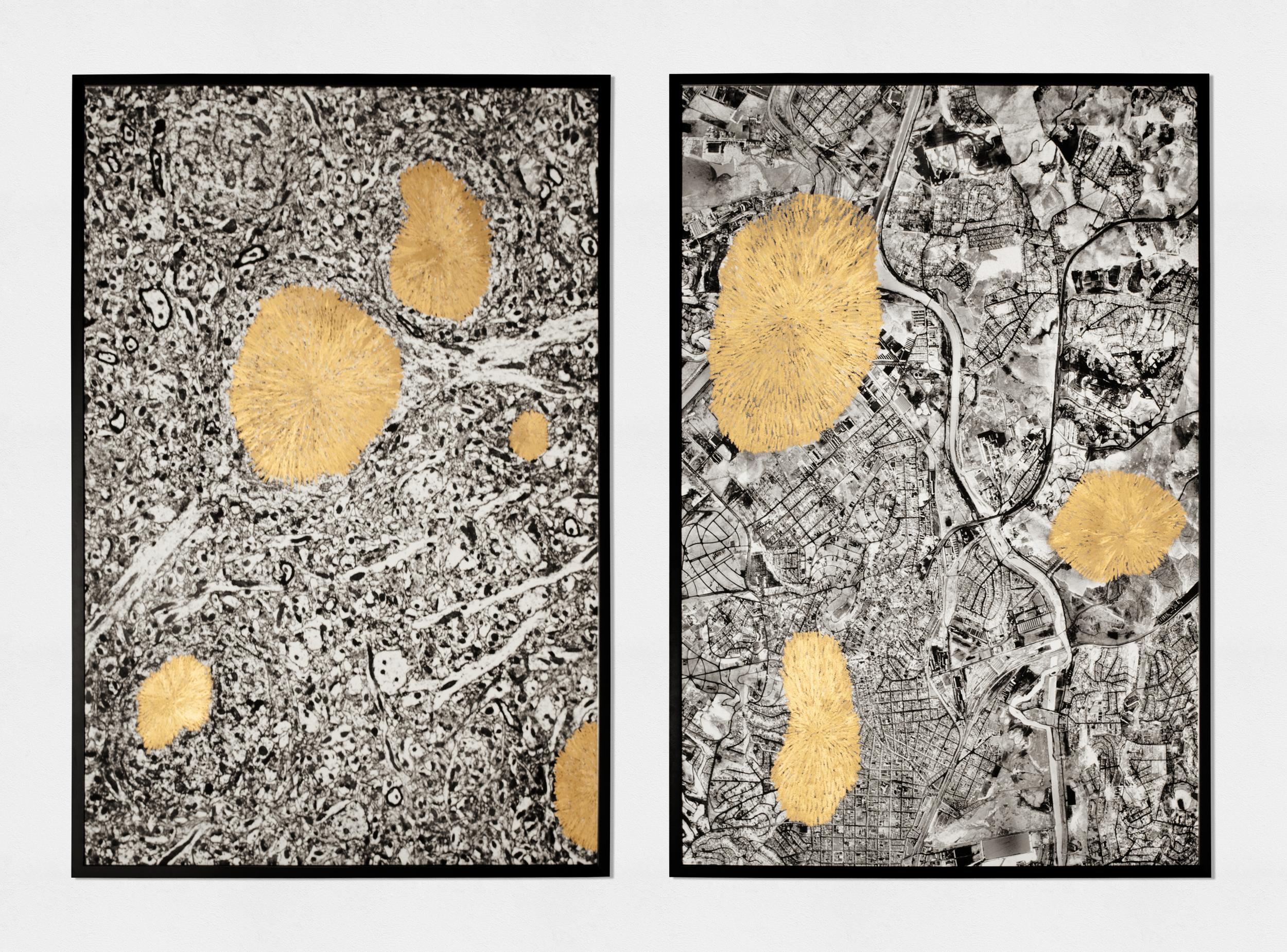 são paulo (2015)  ( oil pastel, 1980s micrograph & 1950s aerial photographs printed on fine art paper, 120cm X 80cm each)