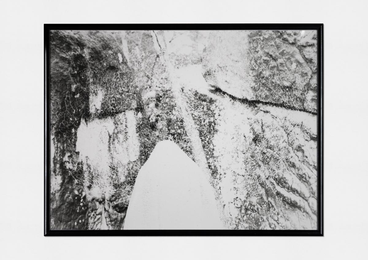 second sighting (2015)   (photo print on fiber paper, 30cm X 40cm)
