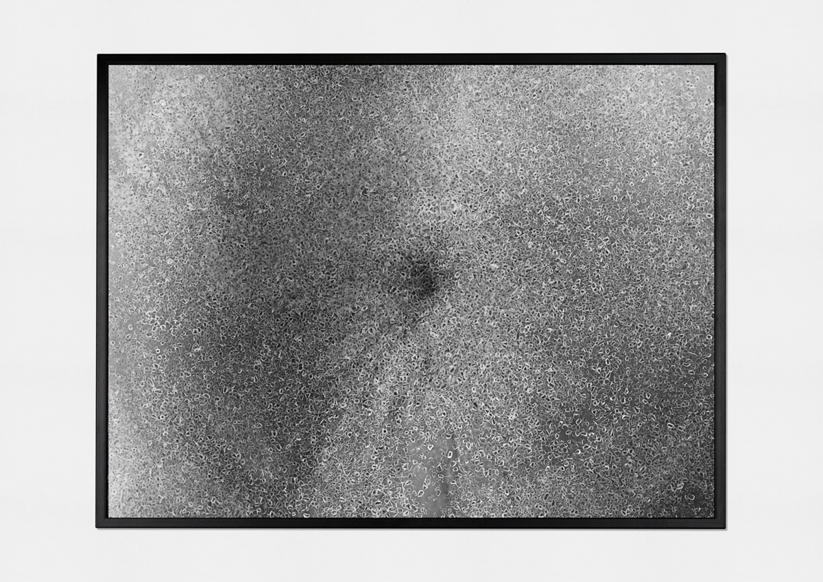 third sighting (2015)   (  photo print on fiber paper, 30cm X 40cm)