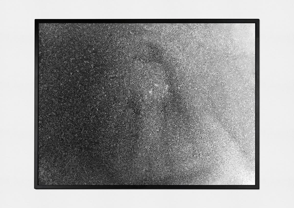 fourth sighting (2015)   (  photo print on fiber paper, 30cm X 40cm)