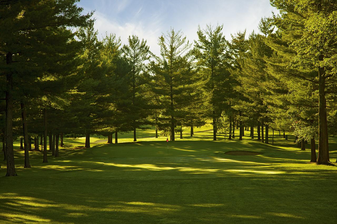 Hole 5, Woods.