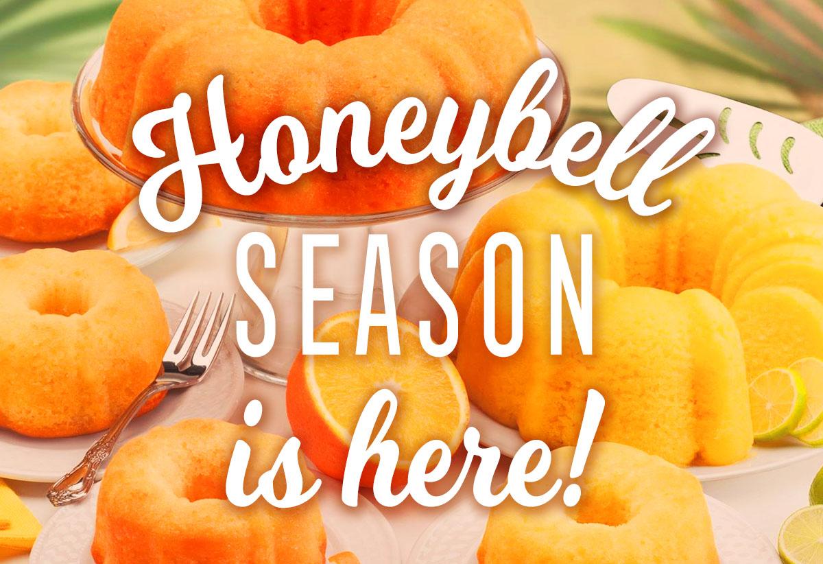 Florida Honeybell Season is Here
