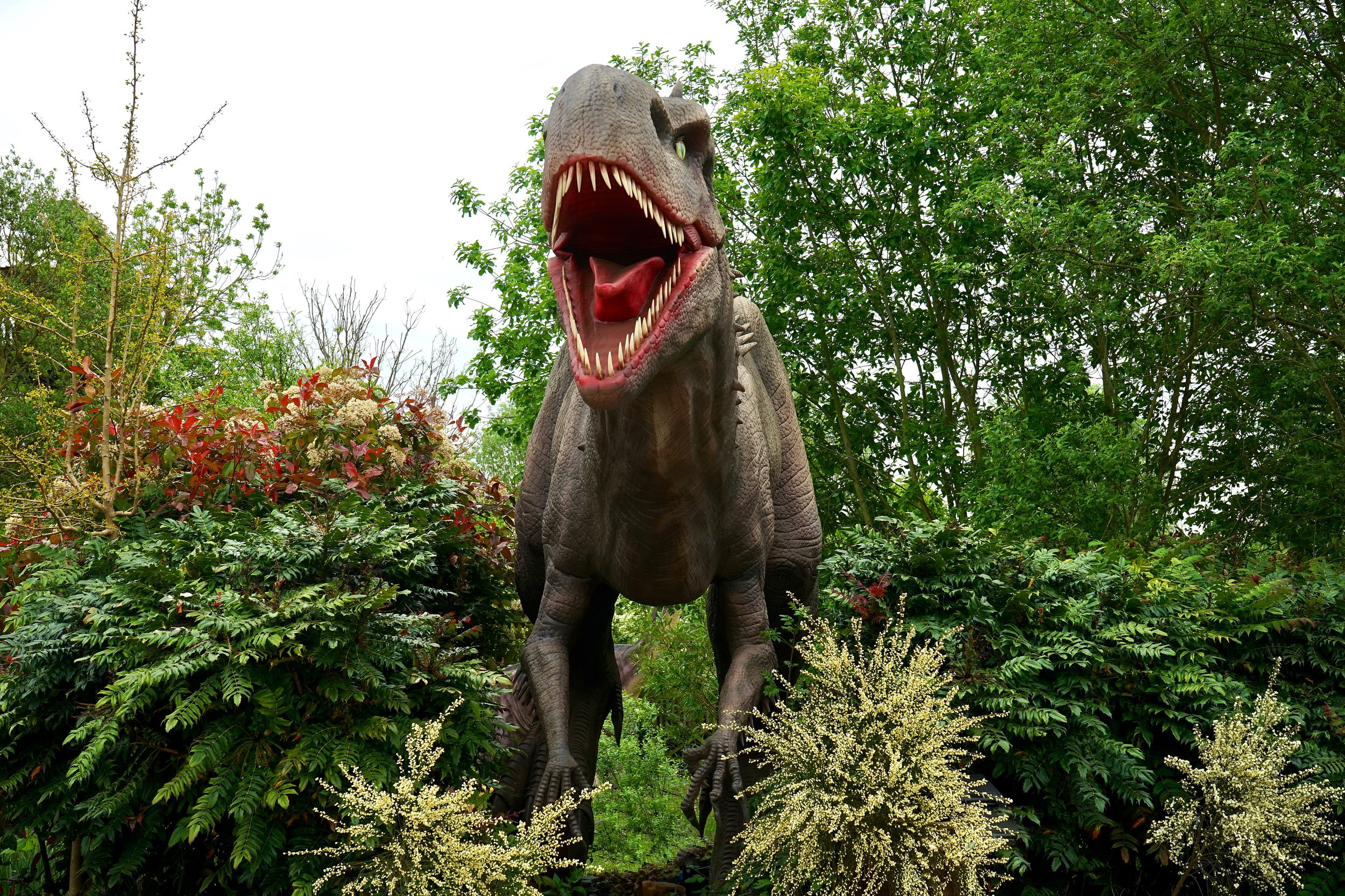 dinosaur-evergreen-figure-410856.jpg