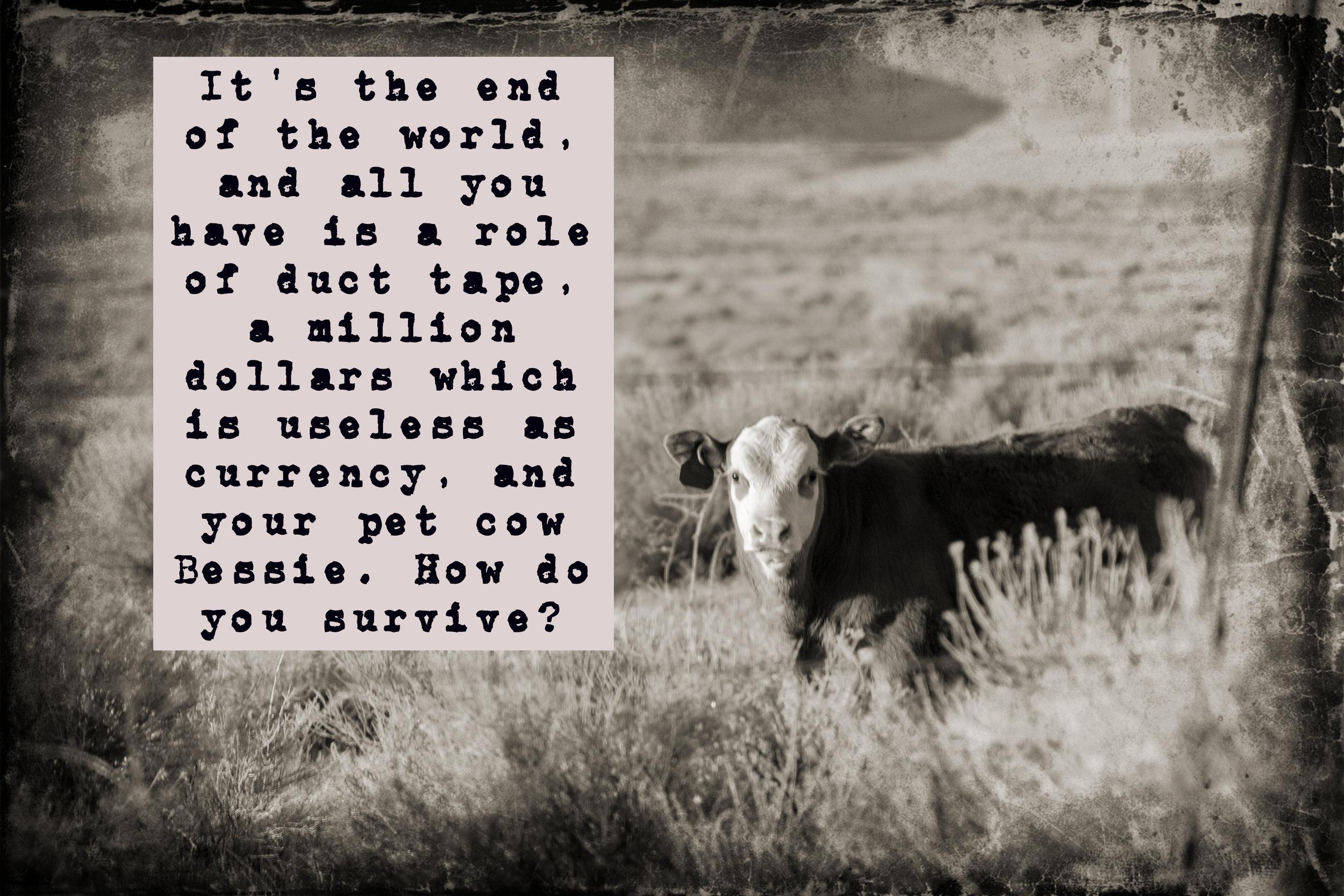 cow prompt.jpg