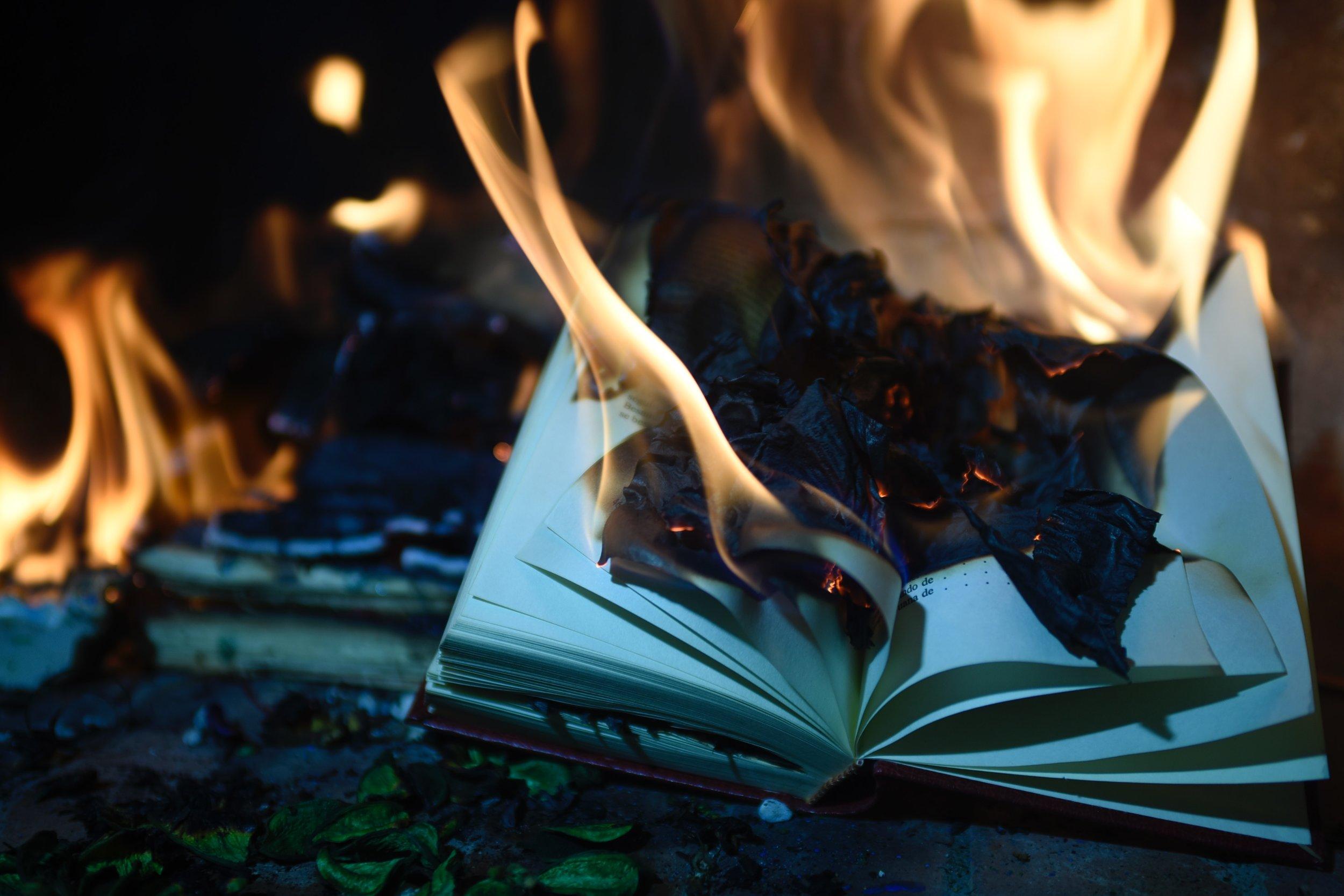 burning-burnt-fire-1474928.jpg