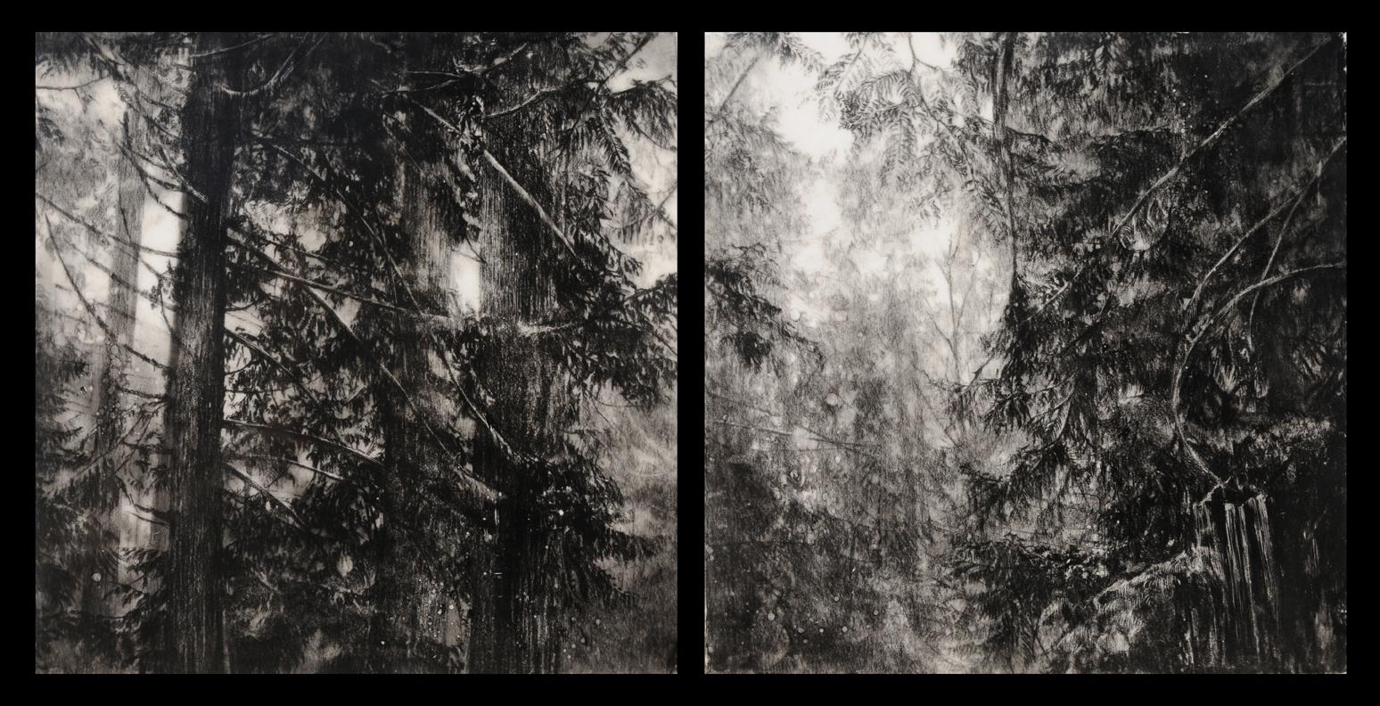 "Hypatia's Woods II  Encaustic and charcoal on wood  10"" x 20"""