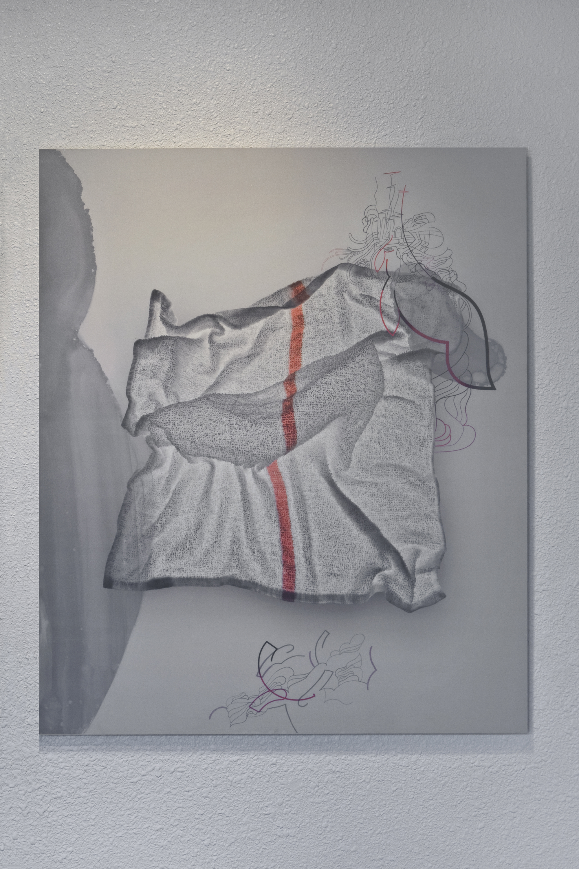 HIKARI, radiance, 2011  Photobased Mixed Media on Aluminum Panel  38 x 32 in.