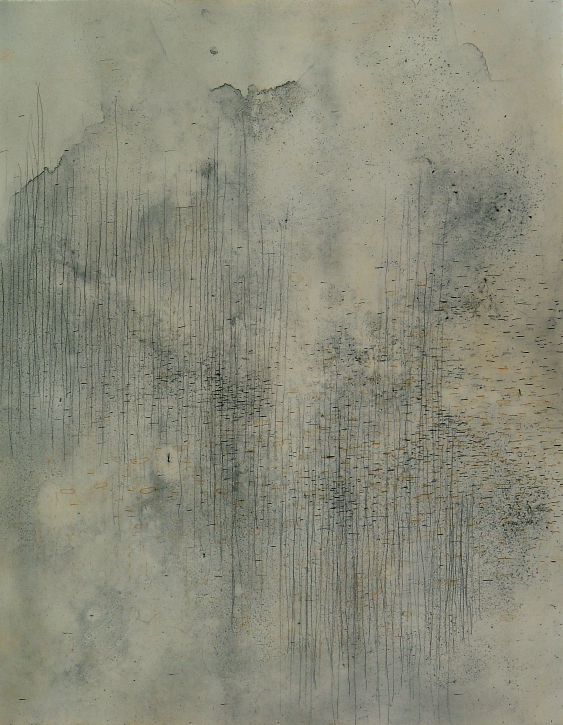 """Ice/Migration 4  Polymer Plate Etching  26"""" x 22"""""""