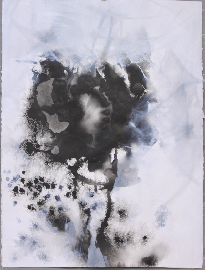 """Pollen Pillows VIII  ink, acrylic, powdered graphite, on paper  30"""" x 22"""""""