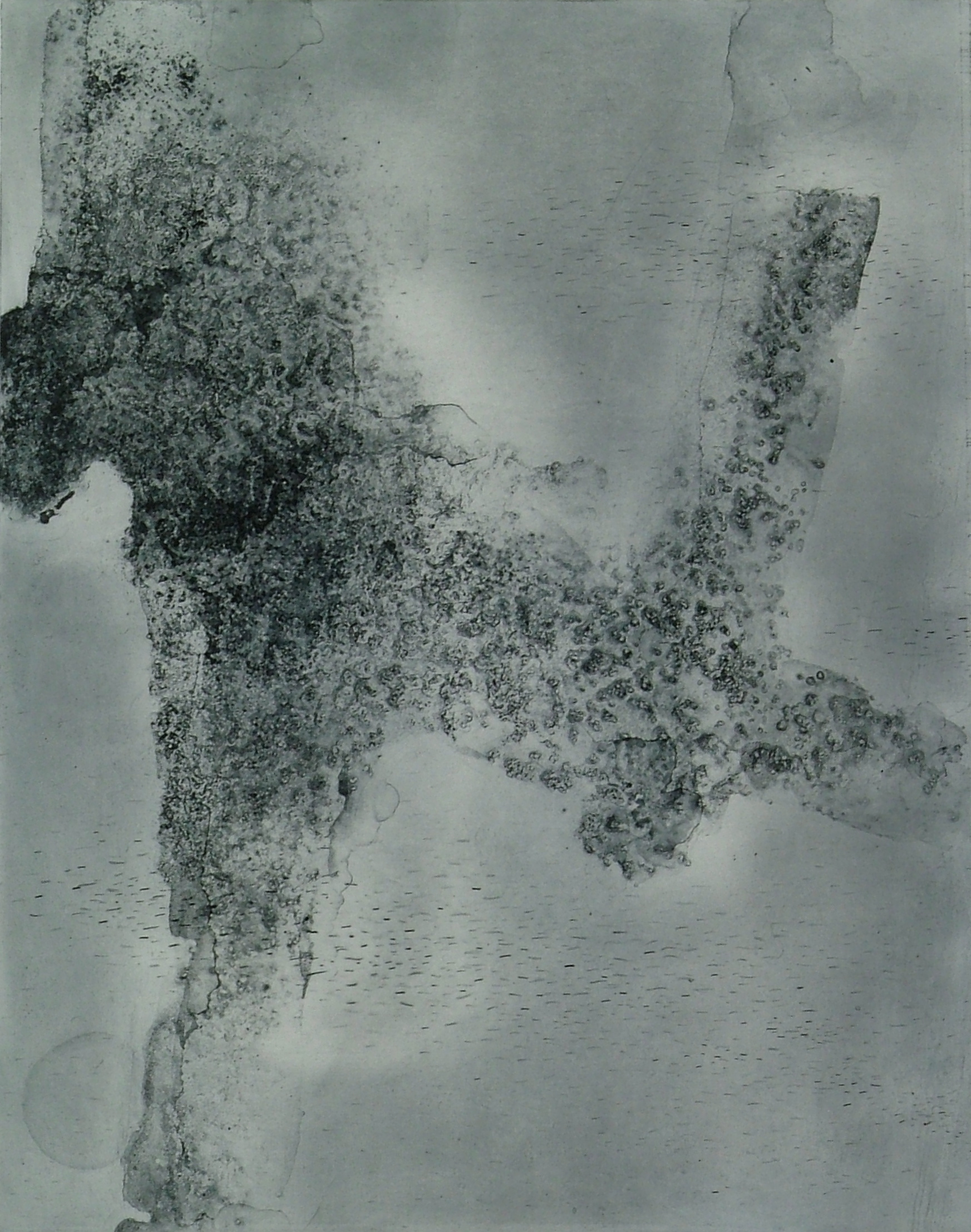 """Kellie Cannon  Ice/migration 2  polymer plate etching on hahnemuhle copperplate paper  16"""" x 20"""" image 22"""" x 26"""" paper"""