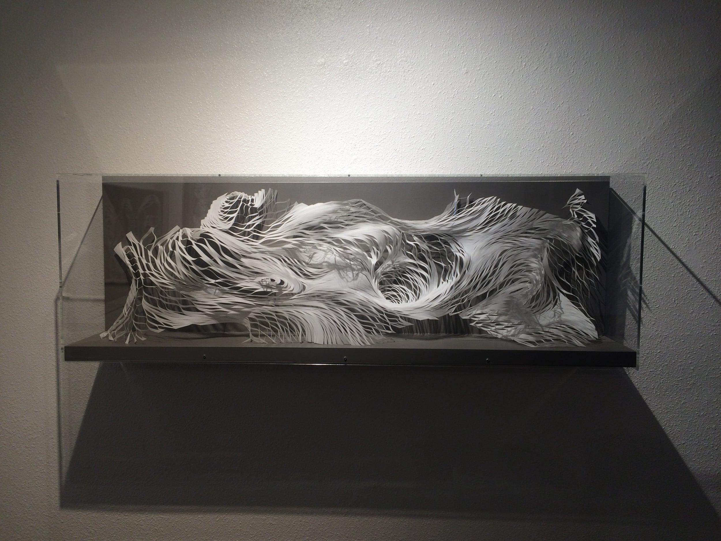 "Expanding Landscape 2  mylar, glue, acrylic  60"" x 19"" x 11"""