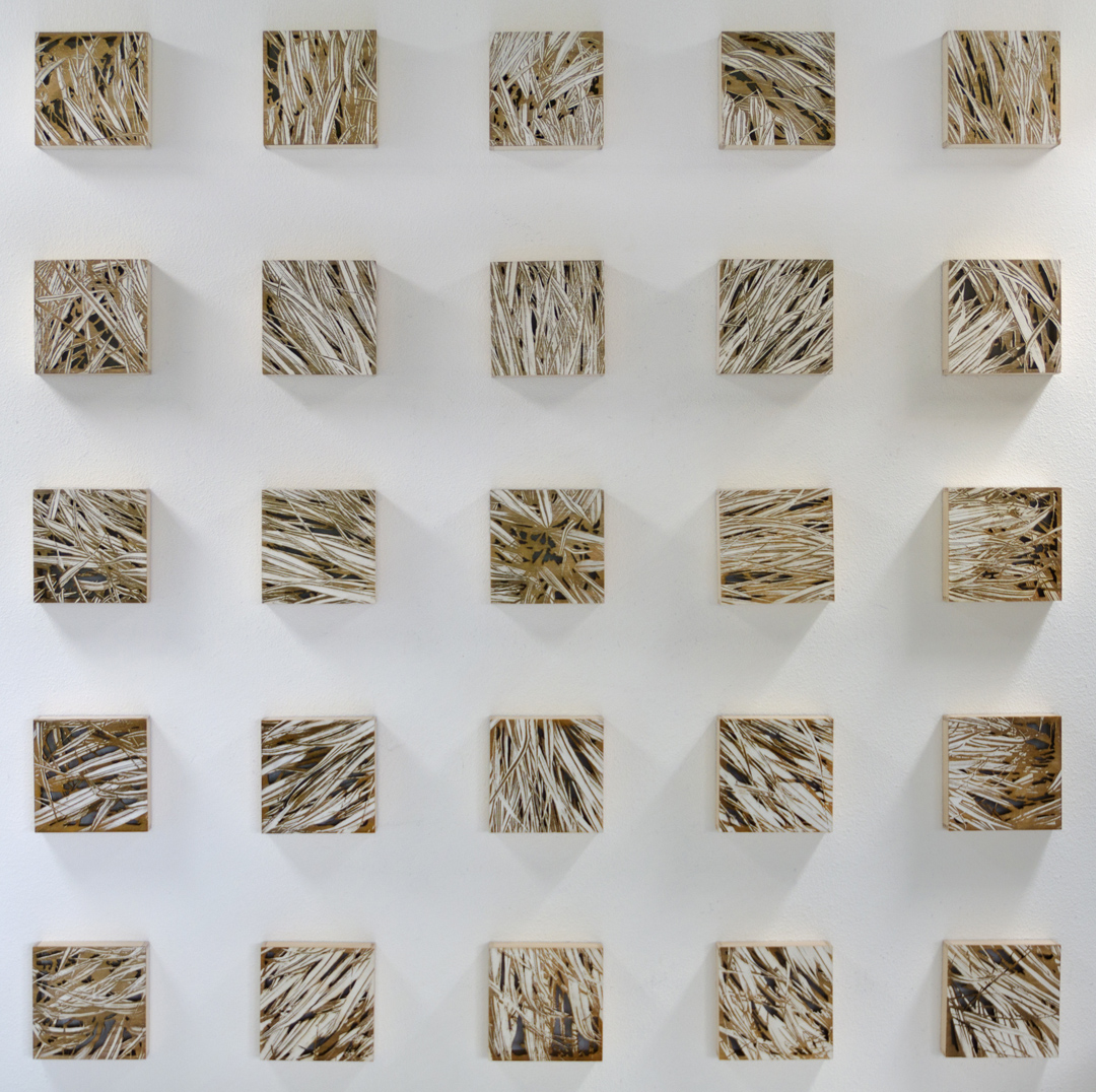 "Karin Schminke  ""Exponential Growth""  54x54  Baltic Birch"