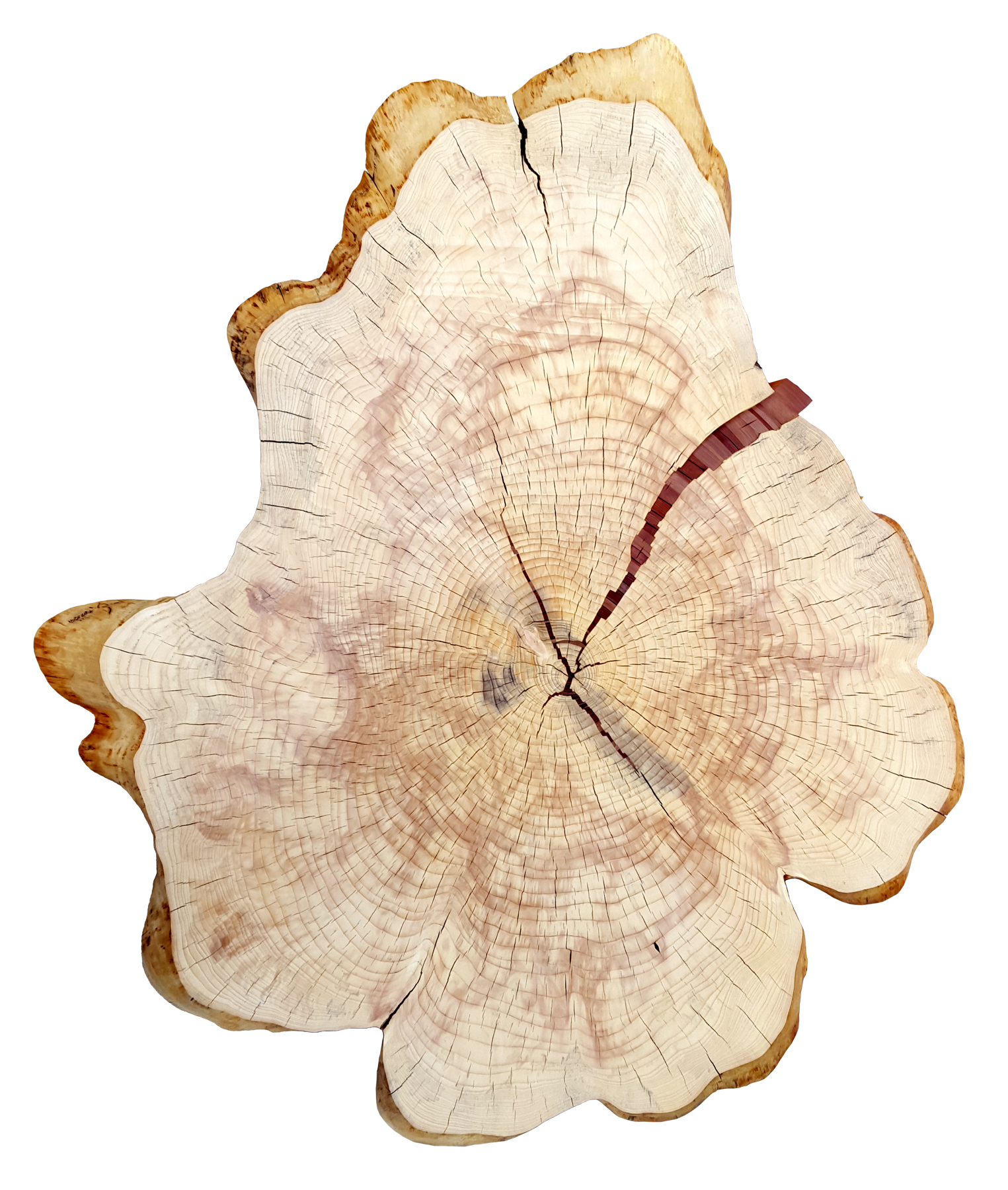 """Chris DeKnikker  """"Heart Building""""  39x48  blue spruce with with cherry and redwood inlay"""
