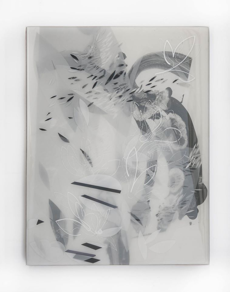 Sabin Aell  Buoyancy of Nothing  19x23  mixed media photography in resin