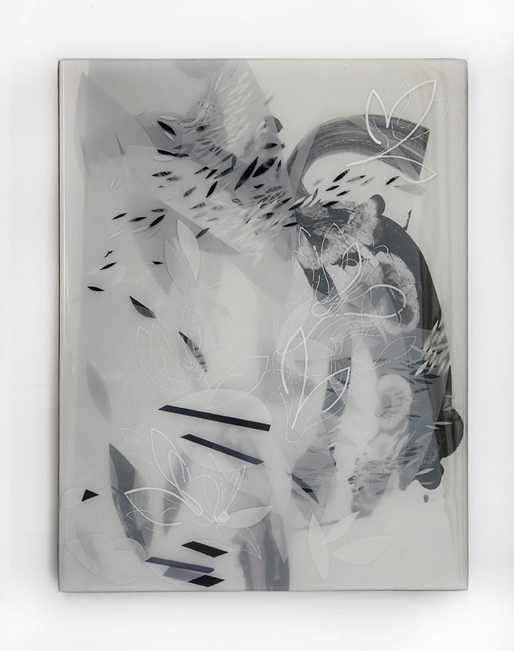 BON 2  mixed media photography in resin  19x23