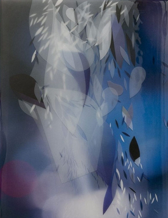Bouyancy of Nothing 1  mixed media photography in resin  19x23