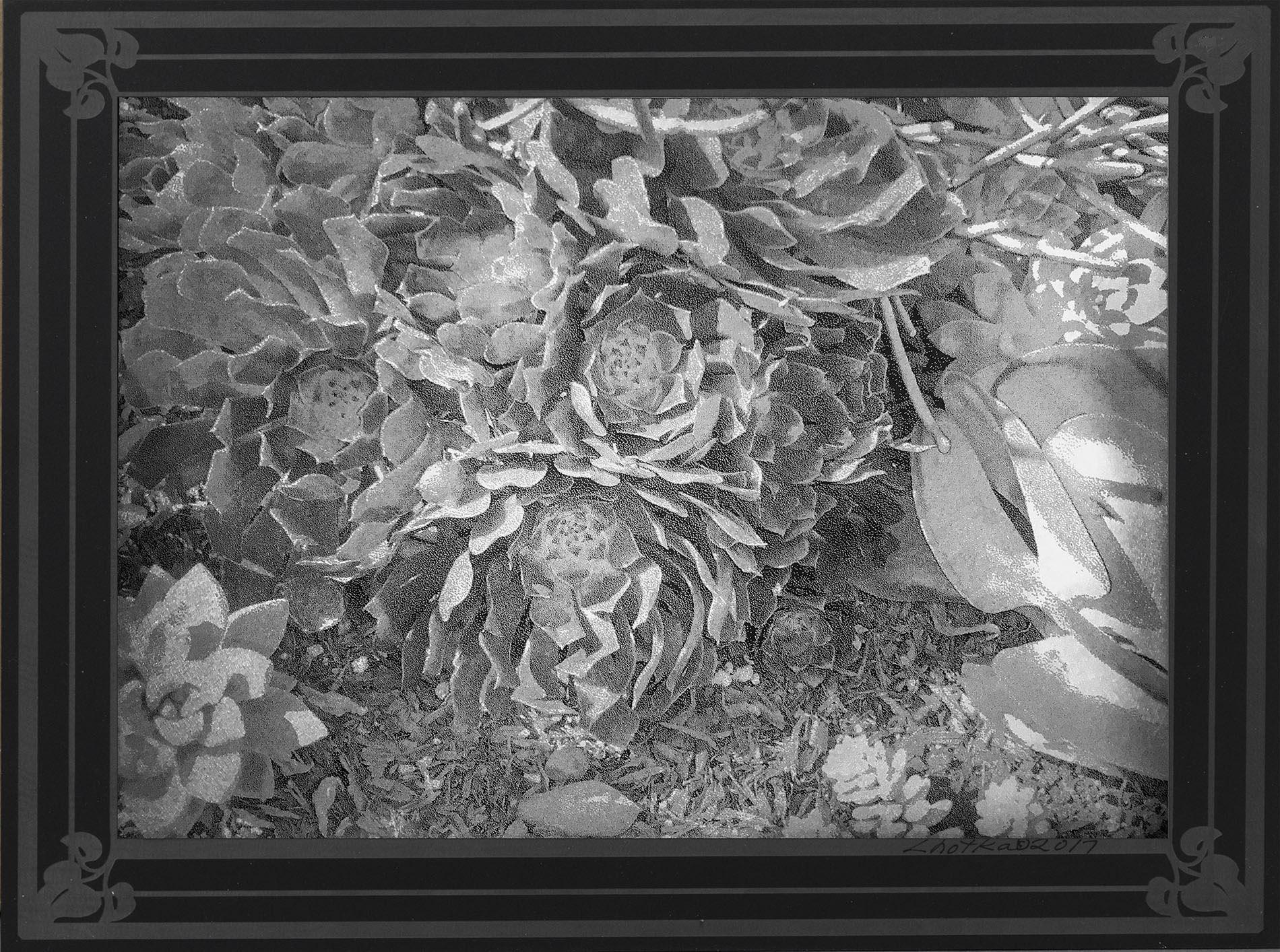 Detailed Garden  9 x 12  caustigram mounted on laser engraved acrylic