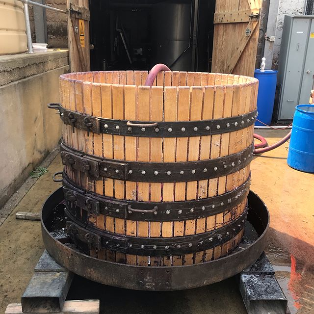Vintage 2019 in full swing: 1920's unirrigated Shiraz being basket-pressed with our late-1800's press straight to oak barrels....the wine-stained hands are worth it!  It's an honour to be working both sides of the fence with these amazing old vine wines. #Vintage2019 #shiraz #basketpress #heritagewines #heritagewinery #norestforthewicked