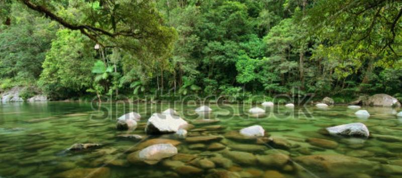 stock-photo-mossman-river-daintree-national-park-queensland-australia-105312563.jpg