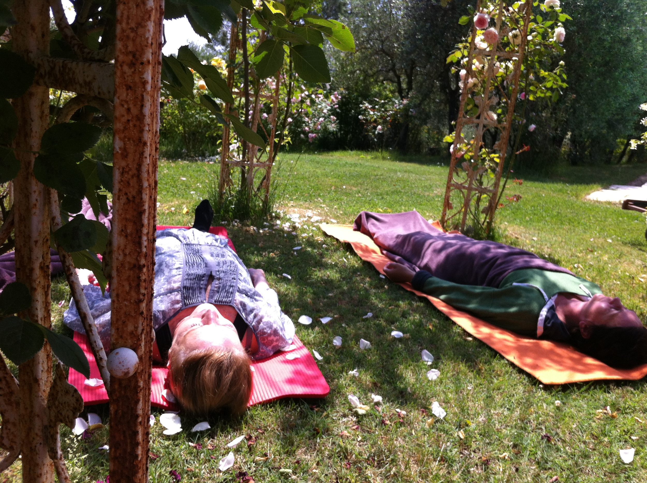 Yoga Nidra under the rose arches
