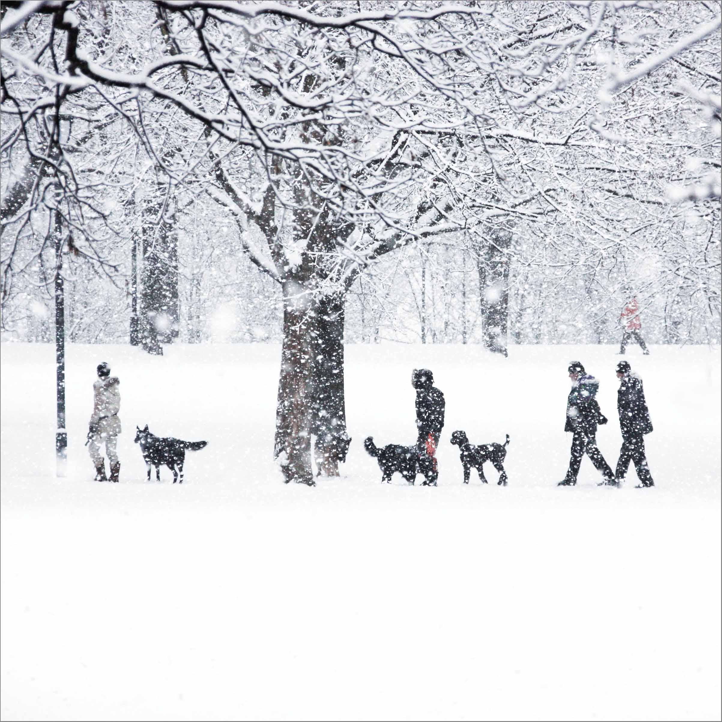 vinter i parken_4.jpg