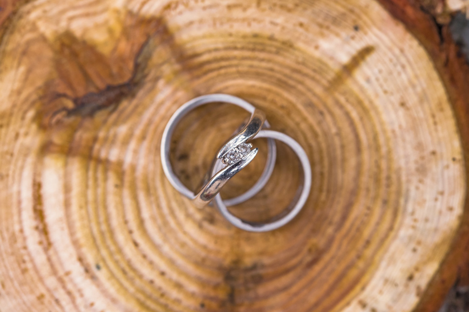Rings engagement wedding photography Caterina Bugno_1.jpg