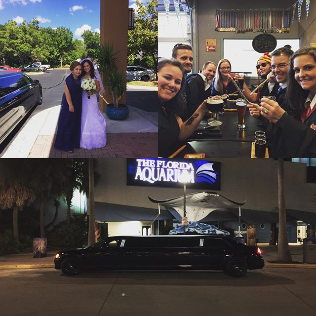 Four #weddings and a #tampabrewtour - sounds like a funny movie #limo #redcarpet #craftbeer #drinklikealocal #beertour #beerlimo
