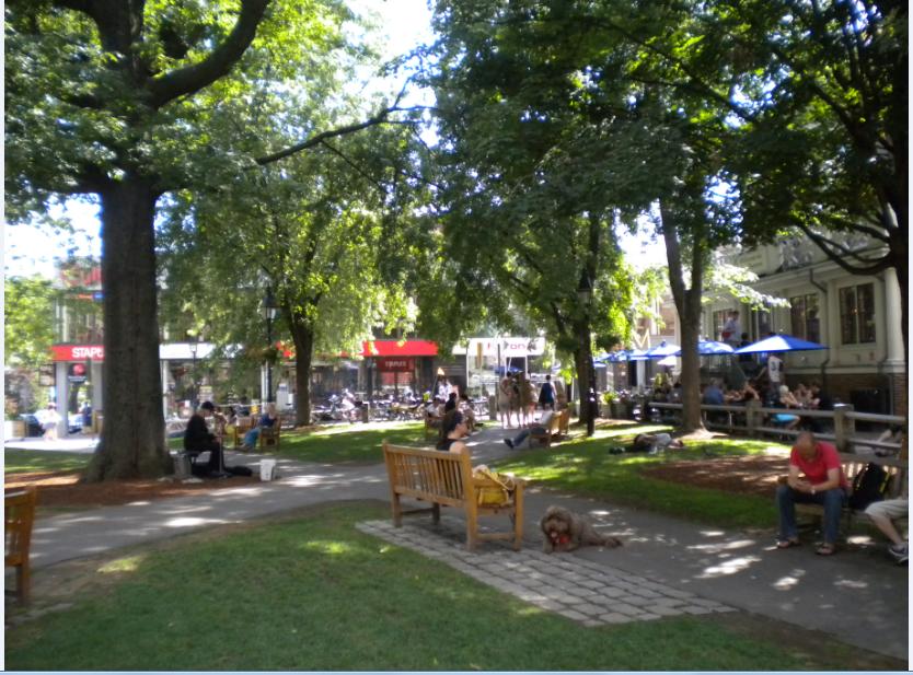 Sobel - Harvard Square, Cambridge