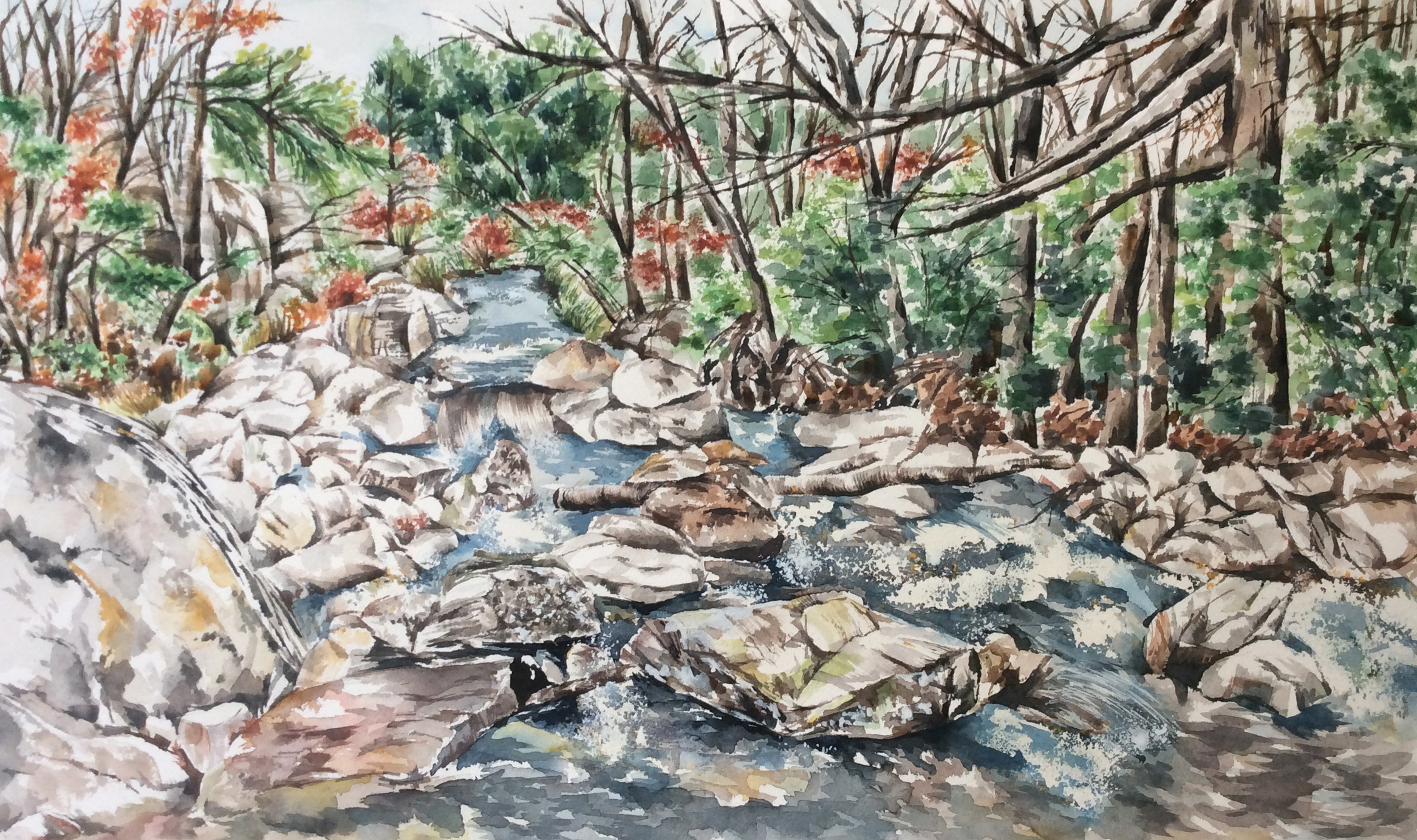 """St. Mary's River 20.5 x 12.5"""" Watercolor"""